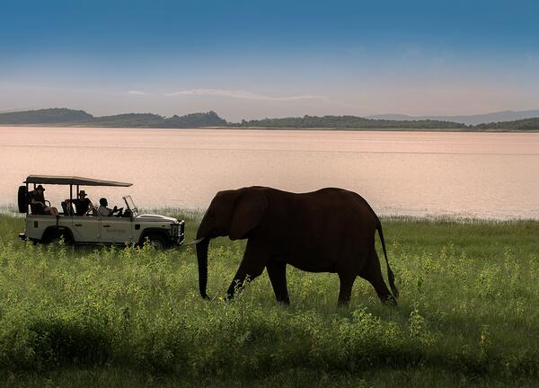 Bumi Hill Safari Lodge_ Lake Kariba_ Zimbabwe_ Luxury Lodge (64)-1