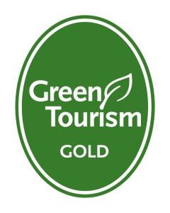 GT generic gold