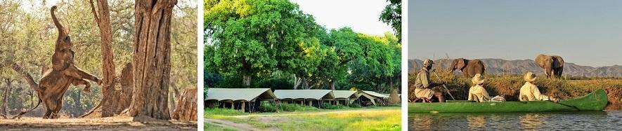 Zambezi Expeditions 2
