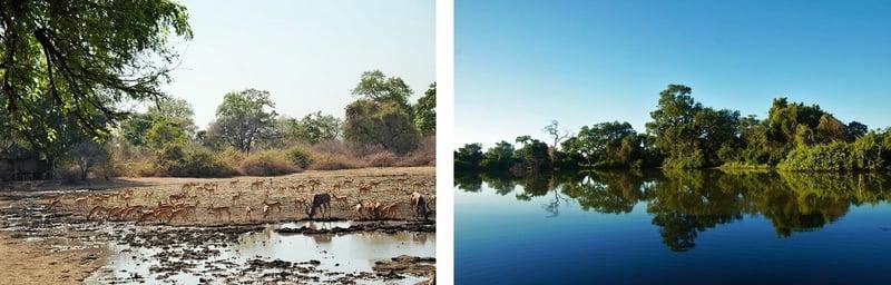 kanga dry-wet