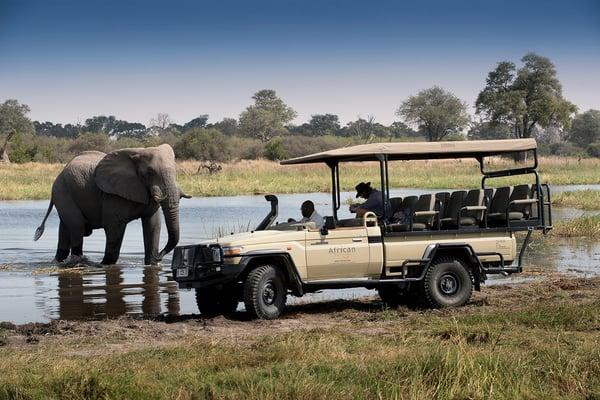 Khwai Tented Camp, Moremi Reserve, Botswana Game Drive with elephant (26)