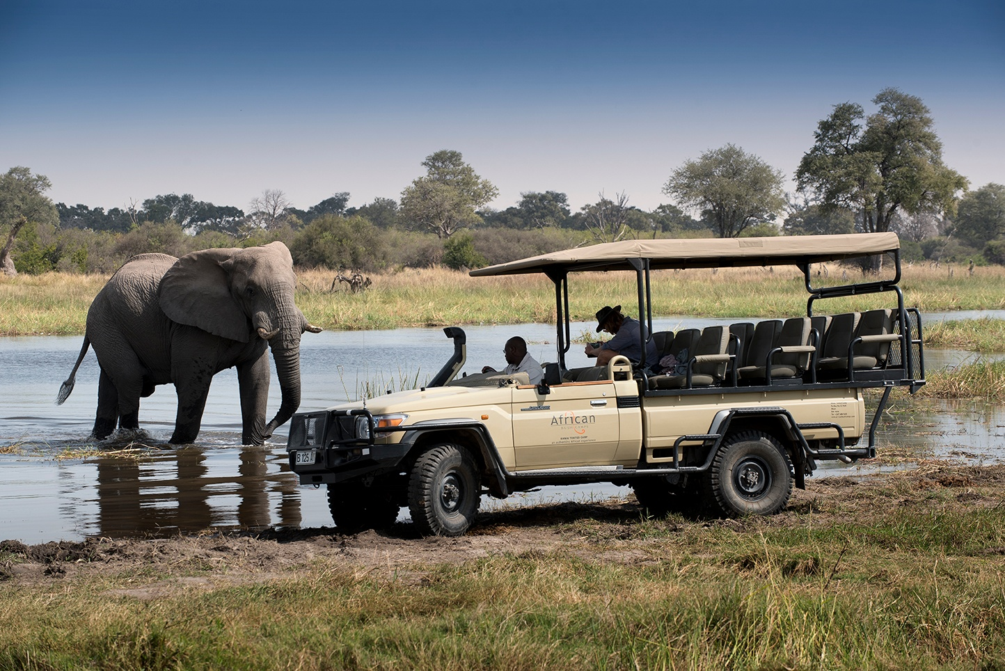 Khwai Tented Camp, Moremi Reserve, Botswana Game Drive with elephant (26)