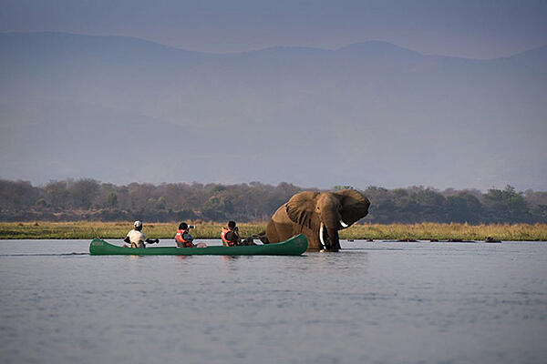 SMALL CANOE-Zambezi-Expeditions-Mana-Pools-National-Park-Zimbabwe-Safari-Tented-Camp-African-Bush-Camps-Canoe-with-elephant-1-1024x684