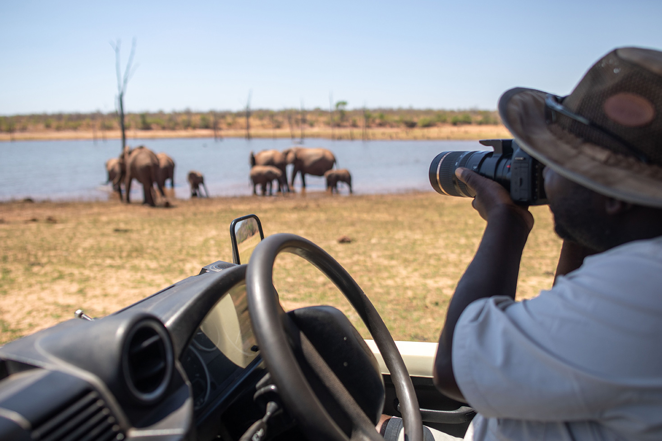 Photography Photosafari Bumi Hills Safari Lodge Elephant Mana Pools National Park Walking Safari Professional Guide When is the best time to go on safari to Zimbabwe