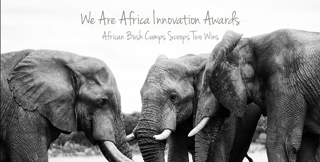2017-We-Are-Africa-Awards-1